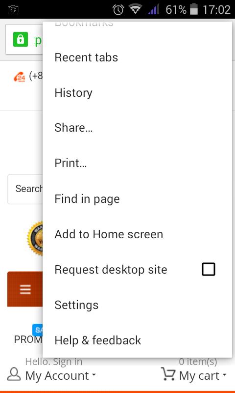 Google Chrome Home Screen